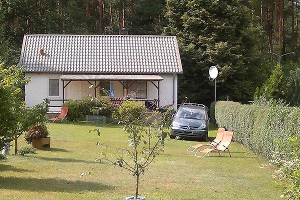 Ferienhaus Familie Rietpietsch in Fürstenberg/Havel - immagine 1