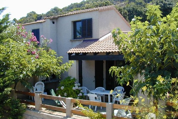 Vacanze in Corsica COR2002 in Sartene - immagine 1