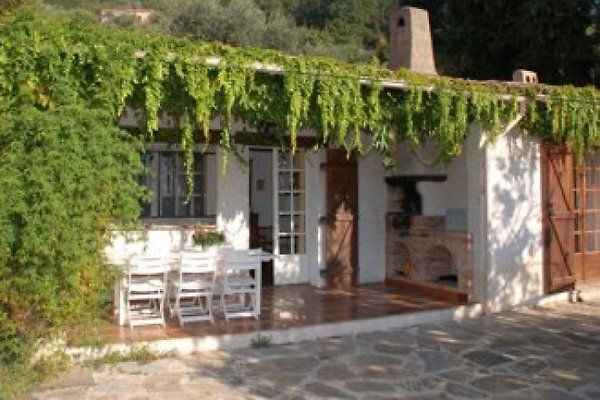 Haus mit Terrasse