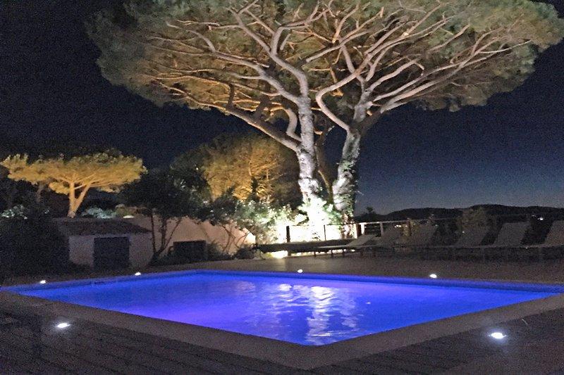 Pool bei night
