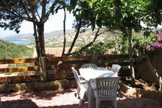Location en Corse COR2003