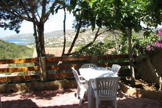 Ferienhaus auf Korsika COR2003