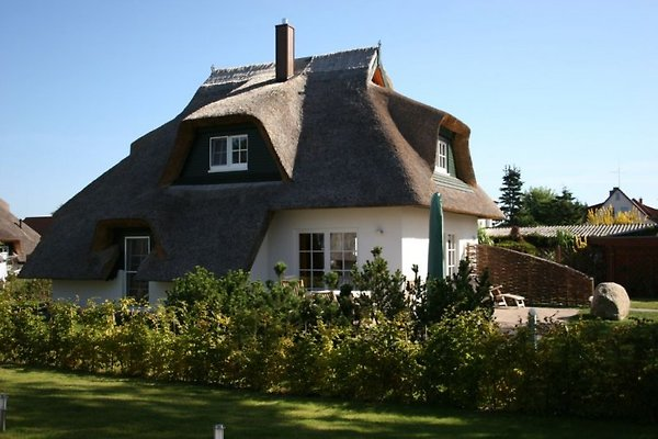 Dat Muschelhus in Heringsdorf - immagine 1