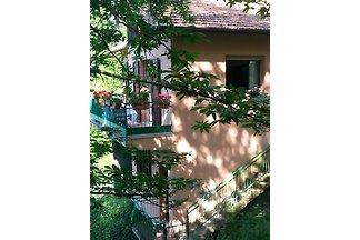 Villa Cillini  ( gern auch m.Hund)