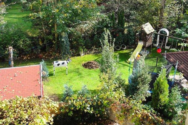 XXL Garten - Blick vom Balkon