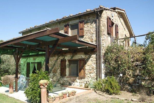 Casa Pereti in Roccatederighi - immagine 1