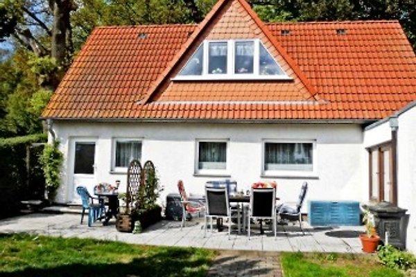 Ferienwohnung Waldidyll à Binz - Image 1