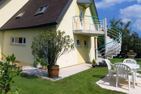 Blick auf die Vogesen à Eguisheim - Image 1