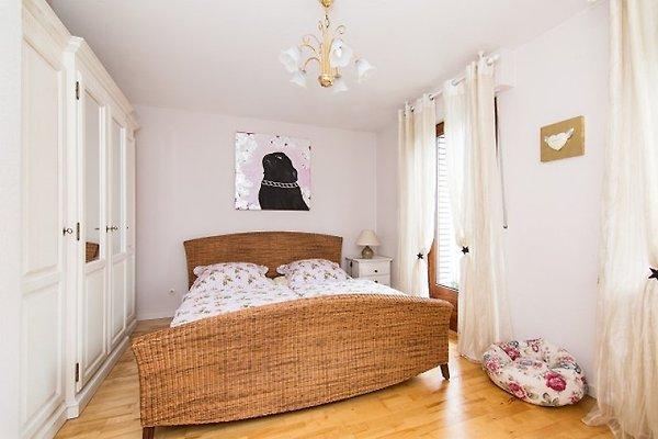 4 wohnungen unter einem dach ferienwohnung in essen mieten. Black Bedroom Furniture Sets. Home Design Ideas