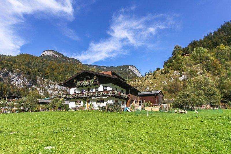 Sommerurlaub auf  Bauernhof à Weißbach Lofer - Image 2