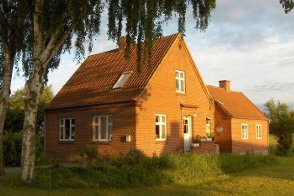Ferienhaus en Langeland -  1