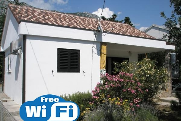 House for rent in Ribarica - immagine 1