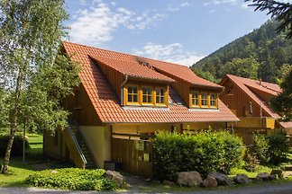 Apartament Ferienhäuser am Brocken