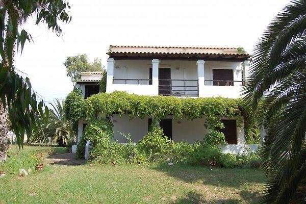 Villa Rena Corfu in Ag. Georgios Argyrades - immagine 1