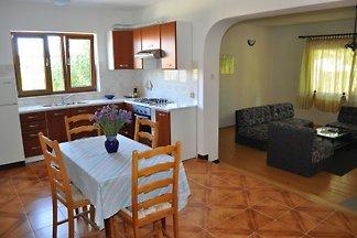 Apartment Drenovica A1