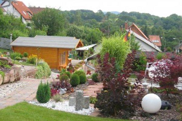 Ferienhaus-Birgit-Scheibel  in Bad Bergzabern - Bild 1
