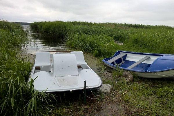 Tret-und Ruderboot