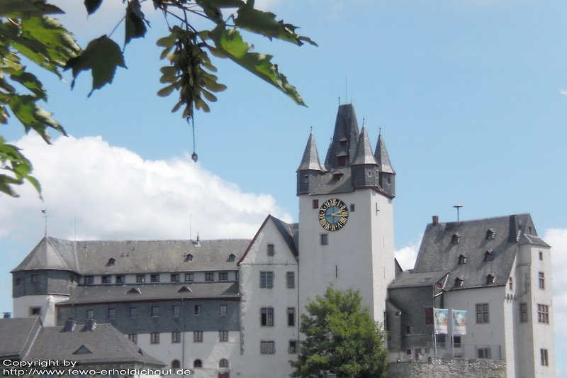 Grafenschloss in Diez