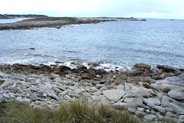 Maison les pieds dans l'eau à Landrellec - Image 1