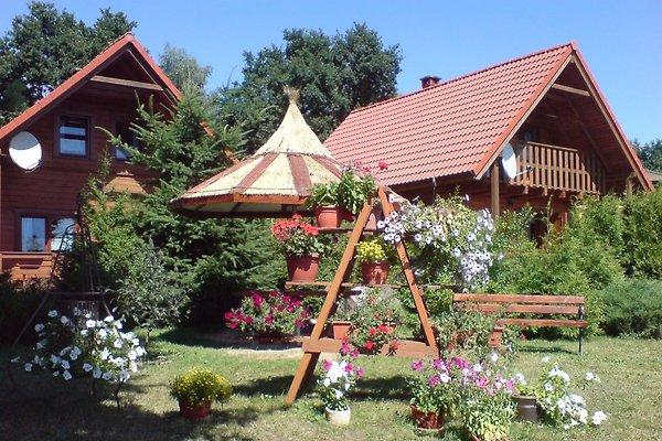 Ferienhäuser Plejady in Dzwirzyno - Bild 1