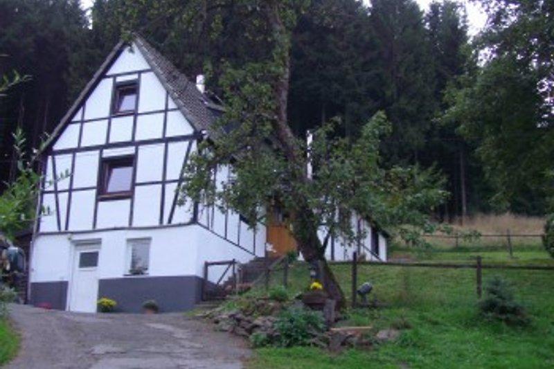 Zufahrt zum Ferienhaus, Schlafzimmerfenster oben darunter Wohnzimmer
