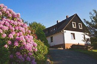 Loup m.Kaminofen appartement dans le Harz