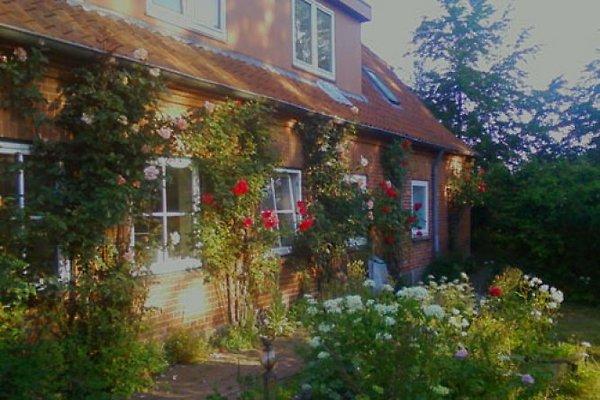 Wambolder Hof à Neukirchen in Ostholstein - Image 1