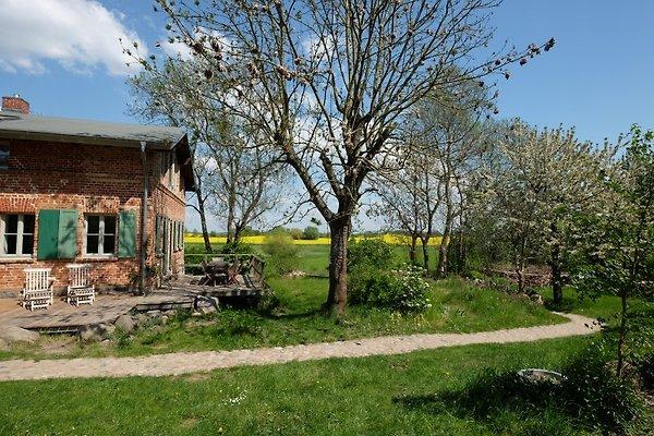Landhaus Fredenwalde in Groß Fredenwalde - Bild 1