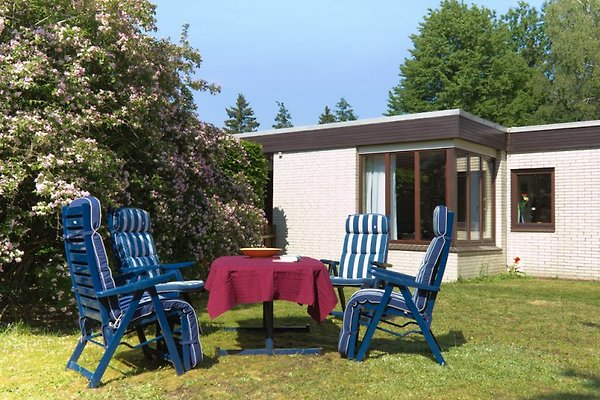 Appartement Trappenkamp  à Trappenkamp - Image 1