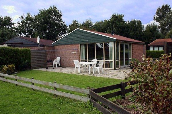 Groenhart 35 à Dirkshorn - Image 1