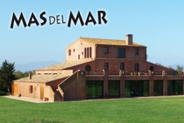 Mas del Mar à Sant Pere Pescador - Image 1