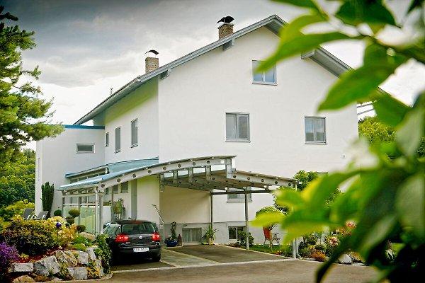 Haus Steinfeld in Wörth - immagine 1