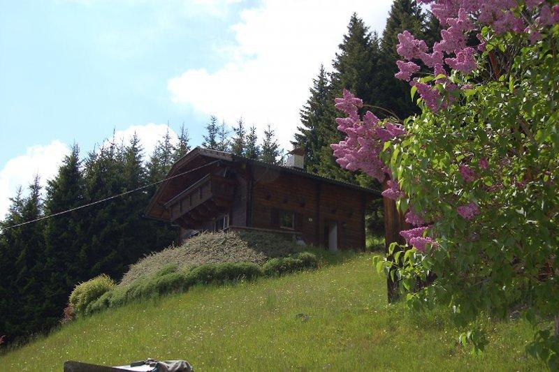 Ferienhaus Klein-Edner à Irschen - Image 2