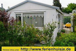 Domek letniskowy Ferienhaus in Ouddorp
