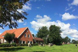 Holiday home in Rhauderfehn