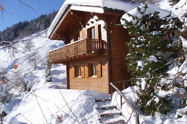 Komfortables berg chalet vakantiehuis in h r mence les masses huren - Interieur chalet berg foto ...