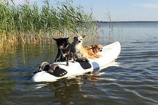 Hundeurlaub am Wasser - Angeln