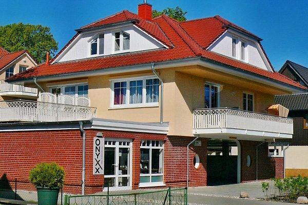 Ferien-Doppelhaushälfte mit separater Dachterrasse (links hinten) mit Blumenkästen als Sichtschutz