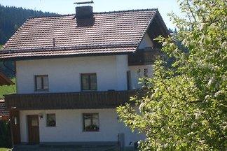 Ferienhaus Drachenland