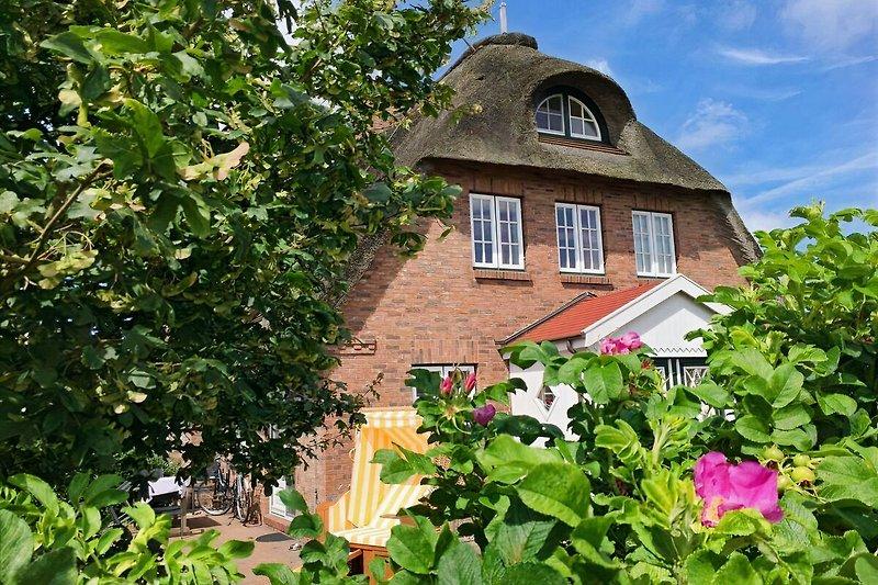 Wohnen unter Reet in einem idyllischen Landhaus auf der Nordsee Insel Föhr in Dunsum am Deich, mit Blick auf die Inseln.