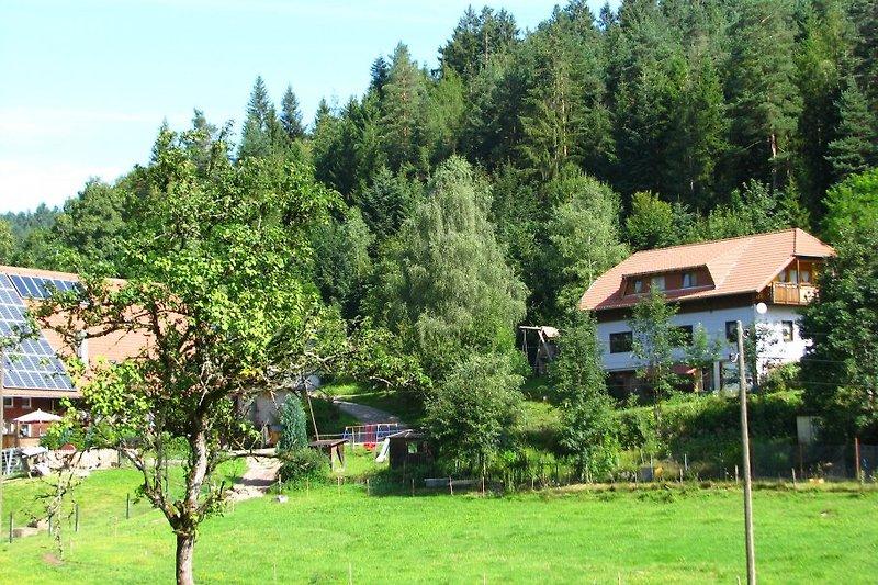 Blick auf Hof und Ferienhaus